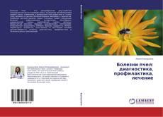Portada del libro de Болезни пчел: диагностика, профилактика, лечение