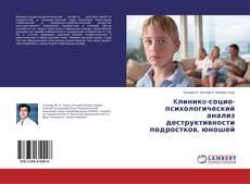 Kлиникo-социо-психологический анализ деструктивности подростков, юношей kitap kapağı