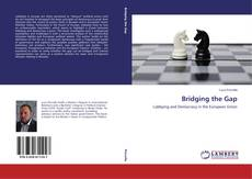 Couverture de Bridging the Gap