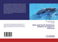 Bookcover of Male Indo-Pacific Bottlenose Dolphins at Captive in Indonesia