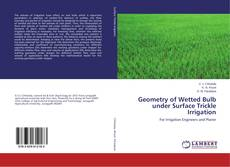 Bookcover of Geometry of Wetted Bulb under Surface Trickle Irrigation