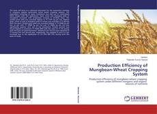 Bookcover of Production Efficiency of Mungbean-Wheat Cropping System