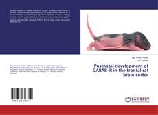 Bookcover of Postnatal development of GABAB–R in the frontal rat brain cortex