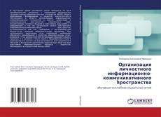Copertina di Организация личностного информационно-коммуникативного пространства
