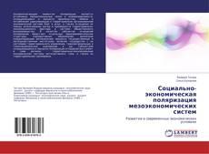 Социально-экономическая поляризация мезоэкономических систем kitap kapağı