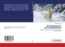 Bookcover of Иннервация и васкуляризация
