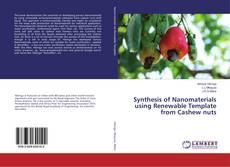 Capa do livro de Synthesis of Nanomaterials using Renewable Template from Cashew nuts