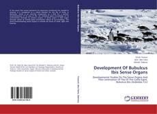 Development Of Bubulcus Ibis Sense Organs的封面