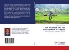 Risk attitudes and risk management strategies的封面