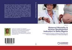 Bookcover of Maternal Mortality & Human Development Indicators in Delta,Nigeria