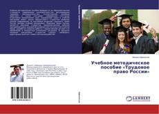 Buchcover von Учебное методическое пособие «Трудовое право России»
