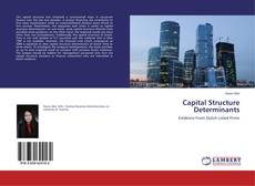 Bookcover of Capital Structure Determinants