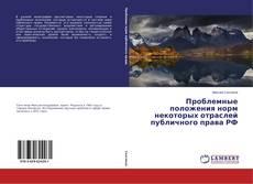 Проблемные положения норм некоторых отраслей публичного права РФ kitap kapağı
