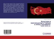 Обложка Культура и просвещение в Турции в эпоху Танзимата: 1839-1876 гг.