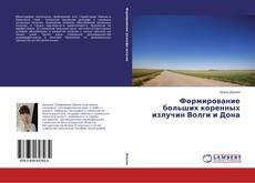 Bookcover of Формирование больших коренных излучин Волги и Дона