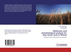 Bookcover of Molecular and morphological analysis for Stay Green trait in Wheat