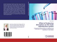 Bookcover of Effect of Endocrine Disruptors on the male reproductive system