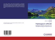Bookcover of Tripterygium wilfordii