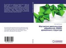 Магнитно-импульсная обработка (МИО) доменных структур的封面