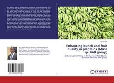 Copertina di Enhancing bunch and fruit quality in plantains (Musa sp. AAB group)