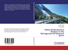 Portada del libro de Utility Of Biochemical Markers In The Management Of Electrical Burns