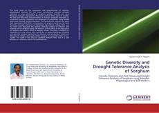 Genetic Diversity and Drought Tolerance Analysis of Sorghum kitap kapağı