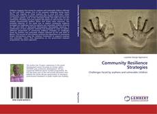 Bookcover of Community Resilience Strategies
