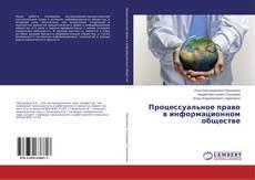 Обложка Процессуальное право в информационном обществе