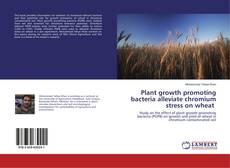 Couverture de Plant growth promoting bacteria alleviate chromium stress on wheat