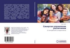 Bookcover of Синергия управления различиями