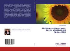 Bookcover of Атомная энергетика - риски управления процессом