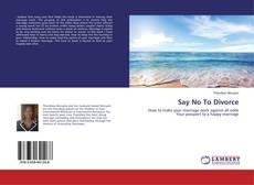 Say No To Divorce kitap kapağı