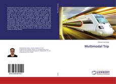 Bookcover of Multimodal Trip