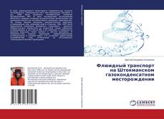 Capa do livro de Флюидный транспорт на Штокманском газоконденсатном месторождении
