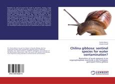 Borítókép a  Chilina gibbosa: sentinel species for water contamination? - hoz