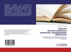 Buchcover von Оценка многостадийных проектов, обладающих гибкостью