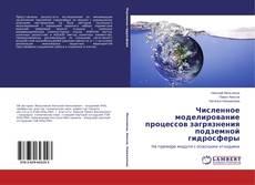 Portada del libro de Численное моделирование процессов загрязнения подземной гидросферы