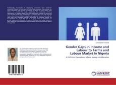 Bookcover of Gender Gaps in Income and Labour to Farms and Labour Market in Nigeria