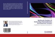 Обложка Multiscale Studies of Subsurface Geomechanics and Reservoir Erosion