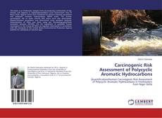 Обложка Carcinogenic Risk Assessment of Polycyclic Aromatic Hydrocarbons