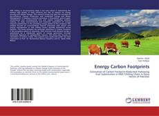 Energy Carbon Footprints kitap kapağı
