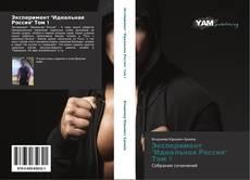 """Эксперимент """"Идеальная Россия"""" Том 1 kitap kapağı"""