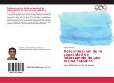Couverture de Determinación de la capacidad de intercambio de una resina catódica