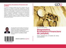 Bookcover of Diagnóstico Económico-Financiero de polybol,