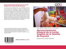 Aprovechamiento Integral de la Leche Vegetal de la Semilla de Auyama kitap kapağı