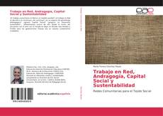 Bookcover of Trabajo en Red, Andragogía, Capital Social y Sustentabilidad