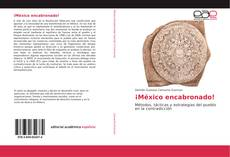 ¡México encabronado! kitap kapağı