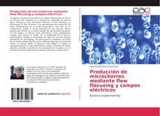Обложка Producción de microchorros mediante flow flocusing y campos eléctricos