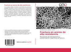 Fractura en aceros de alta resistencia kitap kapağı