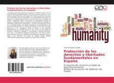 Buchcover von Protección de los derechos y libertades fundamentales en España